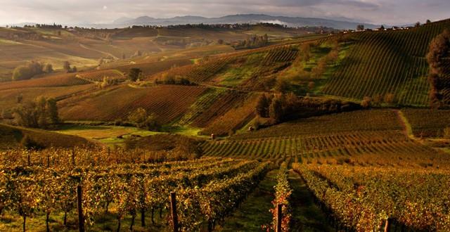 Agriturismo a Piacenza