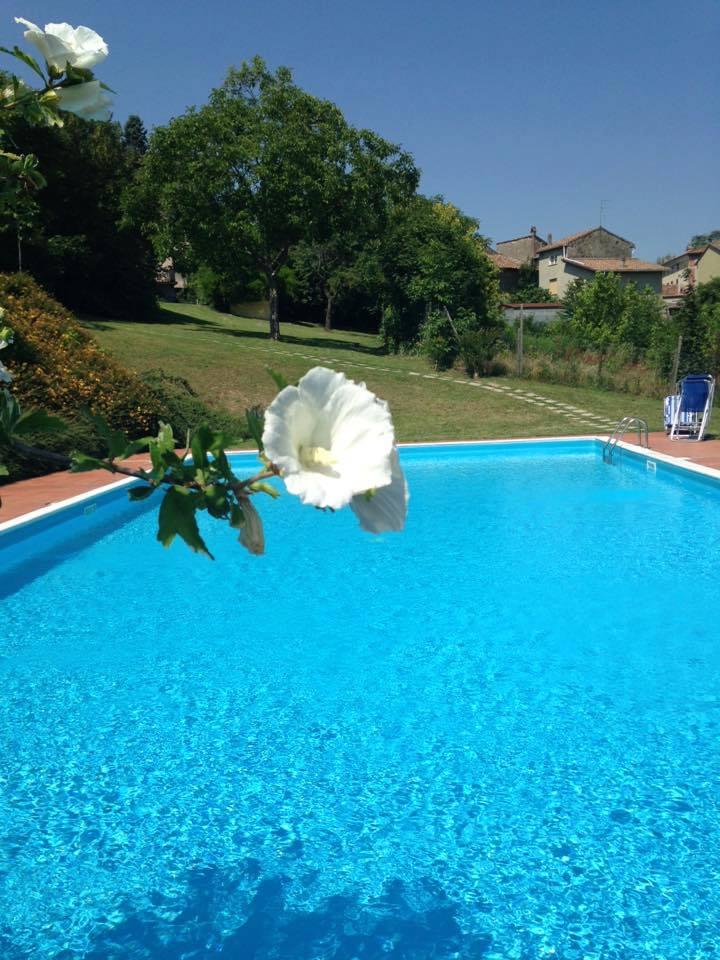 La piscina di Podere Casale